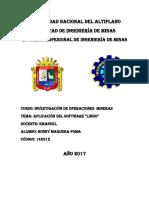 Informe Lingo[1]