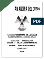 ANTAGONISMO.docx