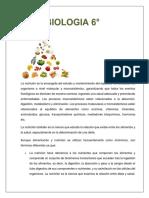 Sintesis Biología 6-2p