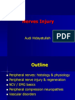 Nerve Injury Audi