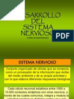 Clase 1 Neuronas y Glia