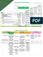 cancer hn2.pdf