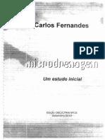 IMPORTANTE – Microdrenagem - Carlos Fernandes