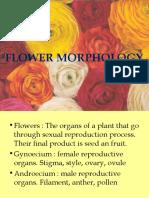 52986_iia. Flower Morphology