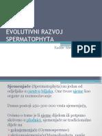 EVOLUTIVNI-RAZVOJ-SPERMATOPHYTA
