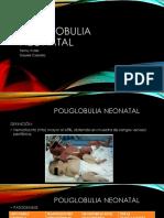 POLIGOBULIA