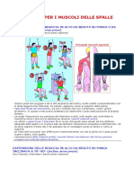 Esercizi Per i Muscoli