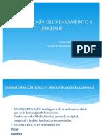 Psicobiología Del Pensameinto y Lenguaje
