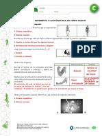 Articles-25409 Recurso Pauta Docx