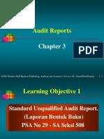 3. Audit Report