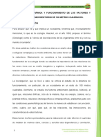 Ecosistema para imprimir.docx