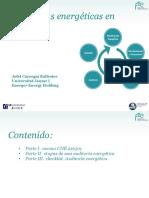 35687098234389 Auditorias energéticas.pdf