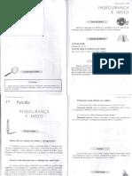 Livro 1 Manual de Lider de Celula