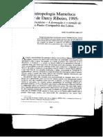 Arruti, José M. - Uma antropologia mameluca a partir de Darcy Ribeiro_.pdf