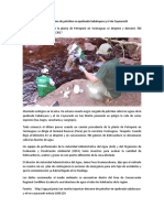 NOTICIA PETROPERU.docx