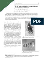 ufblattaria_new (1).pdf