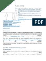 Testfigurahumana.doc