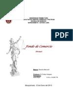 ensayofondodecomercio-130119230449-phpapp01