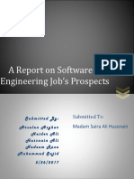 Software Engineering Jobs Prospects (Report Writing)