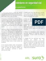 estandares_peatones.pdf