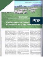158. Artículo produccion ovina futuro promisorio.pdf