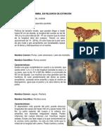 Animal en Peligros de Extinción