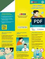 Triptico PAL final.pdf