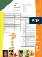 Fabricacion_Jabones_Detergentes (1).pdf