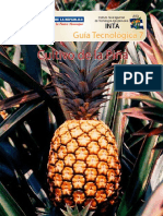 94353512-GUIA-PINA.pdf