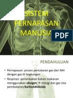 Dinda Sistem Pernafasan