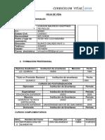 24171 8957 Curriculum Mauricio Hoepfner