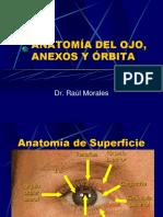 Anatomia y Embriologia Del Ojo [Autoguardado]