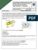 avaliacao somativa 1 bi.pdf