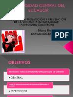Presentacian Final de Proyectos Vielencia Intrafamiliar