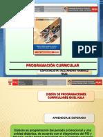 Programación Curricular en Eba