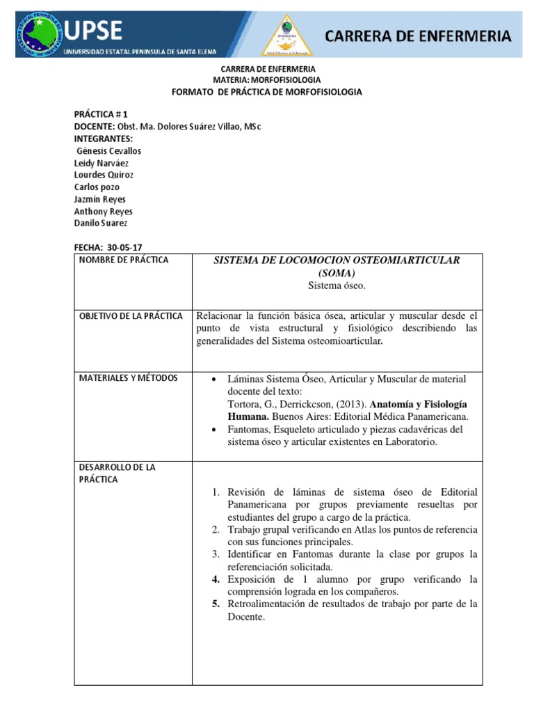 Lujo Anatomía Y La Fisiología De Laboratorio Práctico 1 ...