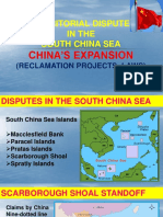 China Expansion FINAL REPORT
