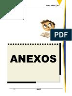 Anexos Del Proyecto Marzo - 2017