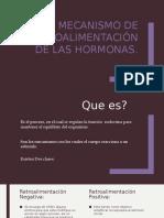 Mecanismo de Retroalimentación de Las Hormonas (1)