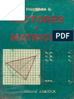 Vectores y matrices - Ricardo Figueroa García