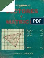 Vectores y matrices - Figueroa.pdf