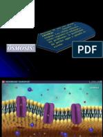 Biología Celular (II Unidad) A3.pdf