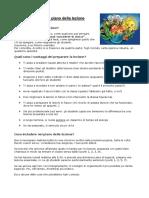 Primi passi. Piano della lezione.pdf