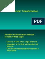 Genetic Transformation 1 2009