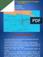 2.4. Medioambientes Sedimentarios Marinosnuevo