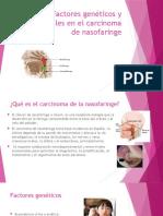 Factores Genéticos y Ambientales en El Carcinoma de(1)