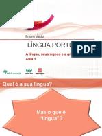 Aula1 a Lingua Seu Signos e a Gramatica