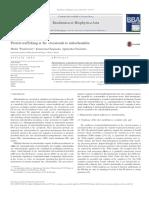 PDF Protein