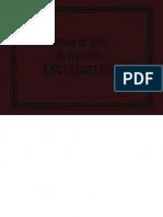 S. de Bruin, De Practische Encyclopaedie - Kopie