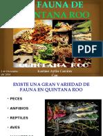 Lafaunadequintanaroo 141202223336 Conversion Gate02